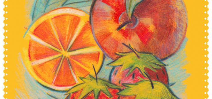 fruit drawing