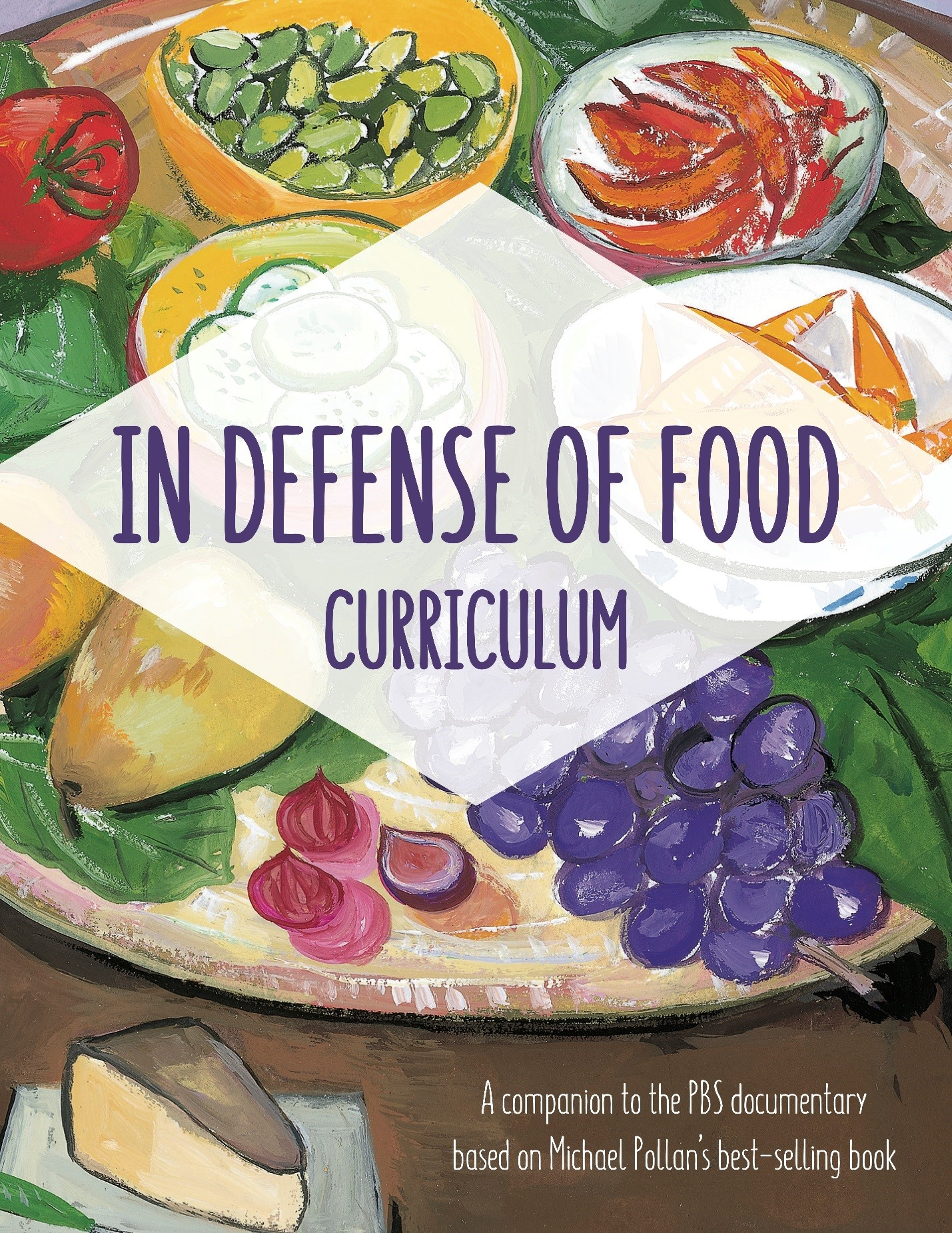Curriculum Review: Accompanying Resource for Middle School